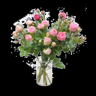 blumenstrau 10 stiele rosafarbene rosen von auf. Black Bedroom Furniture Sets. Home Design Ideas