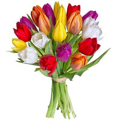 blumenstrau 20 bunte tulpen von valentins auf. Black Bedroom Furniture Sets. Home Design Ideas