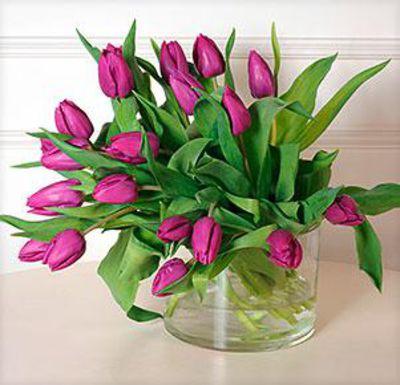 blumenstrau 20 lila tulpen von auf. Black Bedroom Furniture Sets. Home Design Ideas