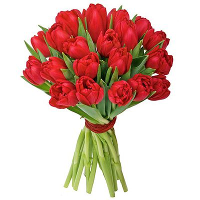 blumenstrau 20 rote tulpen von valentins auf. Black Bedroom Furniture Sets. Home Design Ideas