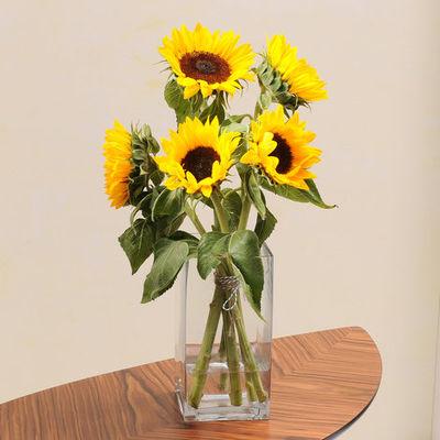 blumenstrau 5 herrlich gelbe sonnenblumen von auf. Black Bedroom Furniture Sets. Home Design Ideas