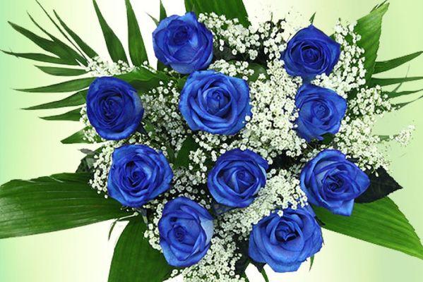 blumenstrau blaue rosen von auf. Black Bedroom Furniture Sets. Home Design Ideas