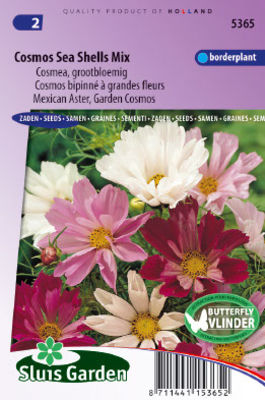 Cosmos Sea Shells Mixed (Aster) von Gartencenter Koeman auf blumen.de