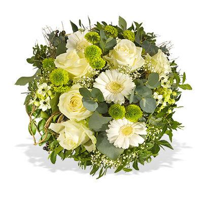 Gerbera günstig kaufen und verschicken auf Blumen.de