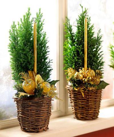 mini weihnachtsbaum im korb von bakker auf kaufen. Black Bedroom Furniture Sets. Home Design Ideas