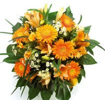 Blumen Günstig Kaufen Und Verschicken Mit Blumende