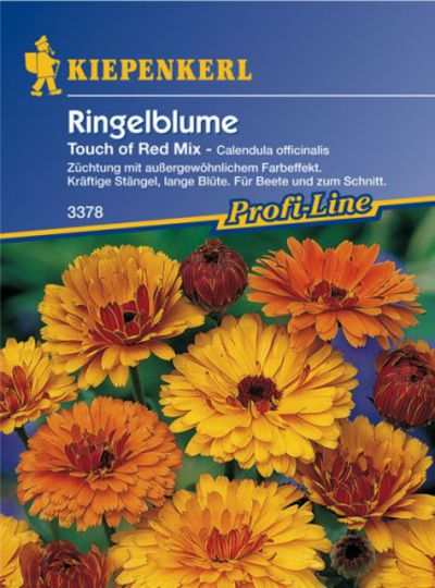 Ringelblume Touch of Red - Mix von Olerum.de auf blumen.de