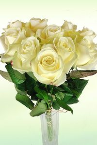 blumenstrau einzelne rose wei von florito flowerpost auf. Black Bedroom Furniture Sets. Home Design Ideas