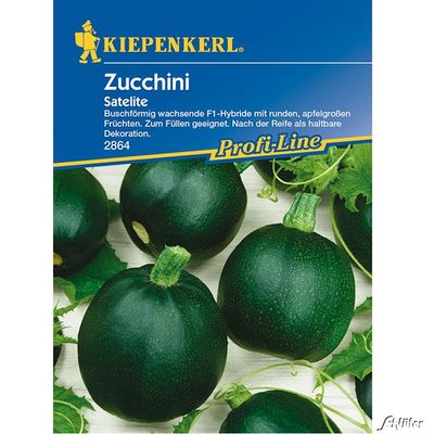 zucchini satelite von garten schl ter auf kaufen. Black Bedroom Furniture Sets. Home Design Ideas