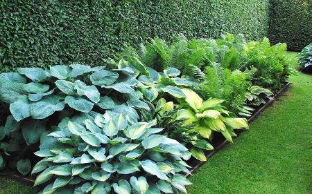 garten gestalten mit pflanzplanen – nmmrc, Garten Ideen
