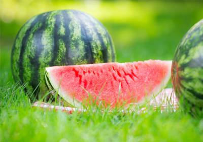 Bittere Melone und Brustkrebs